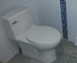Compact Round Front Toilet